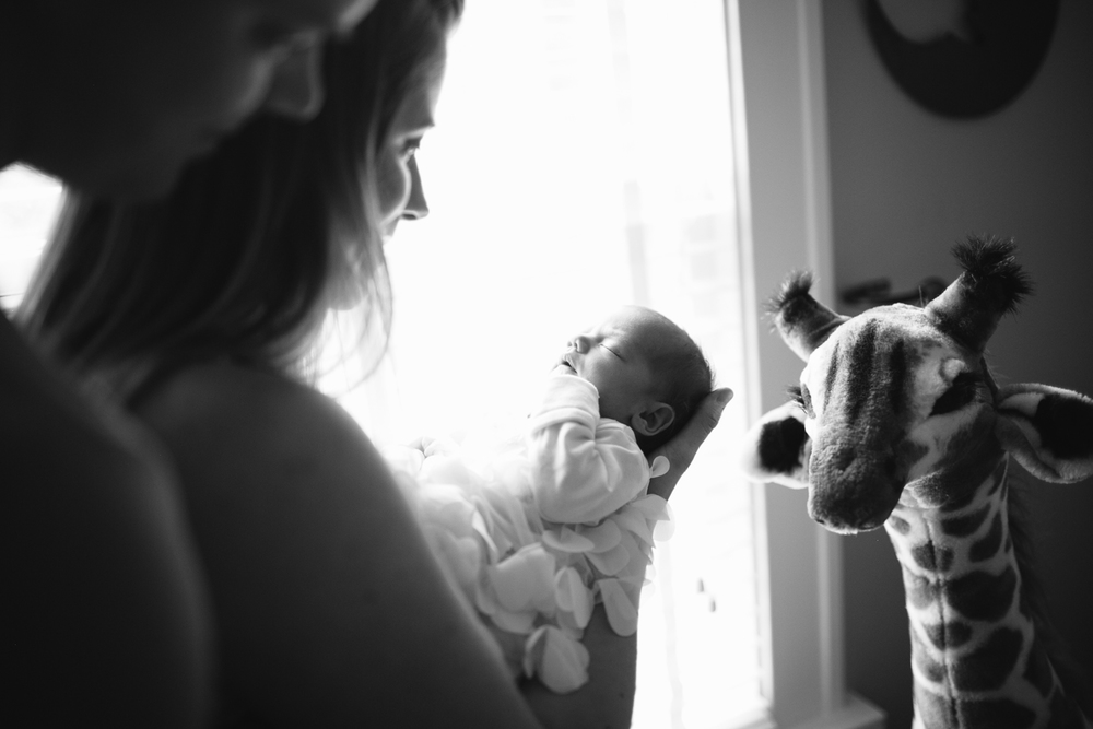 Newborn Photographer in Cedar Falls, IA