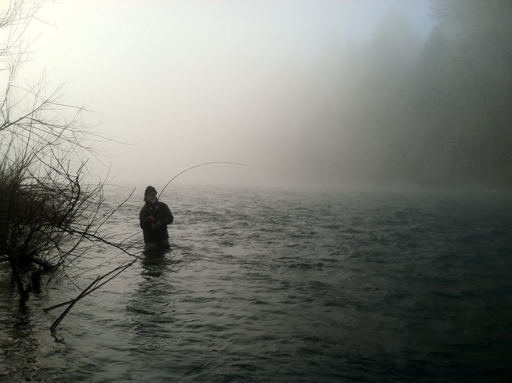 hooked up in the fog.jpg