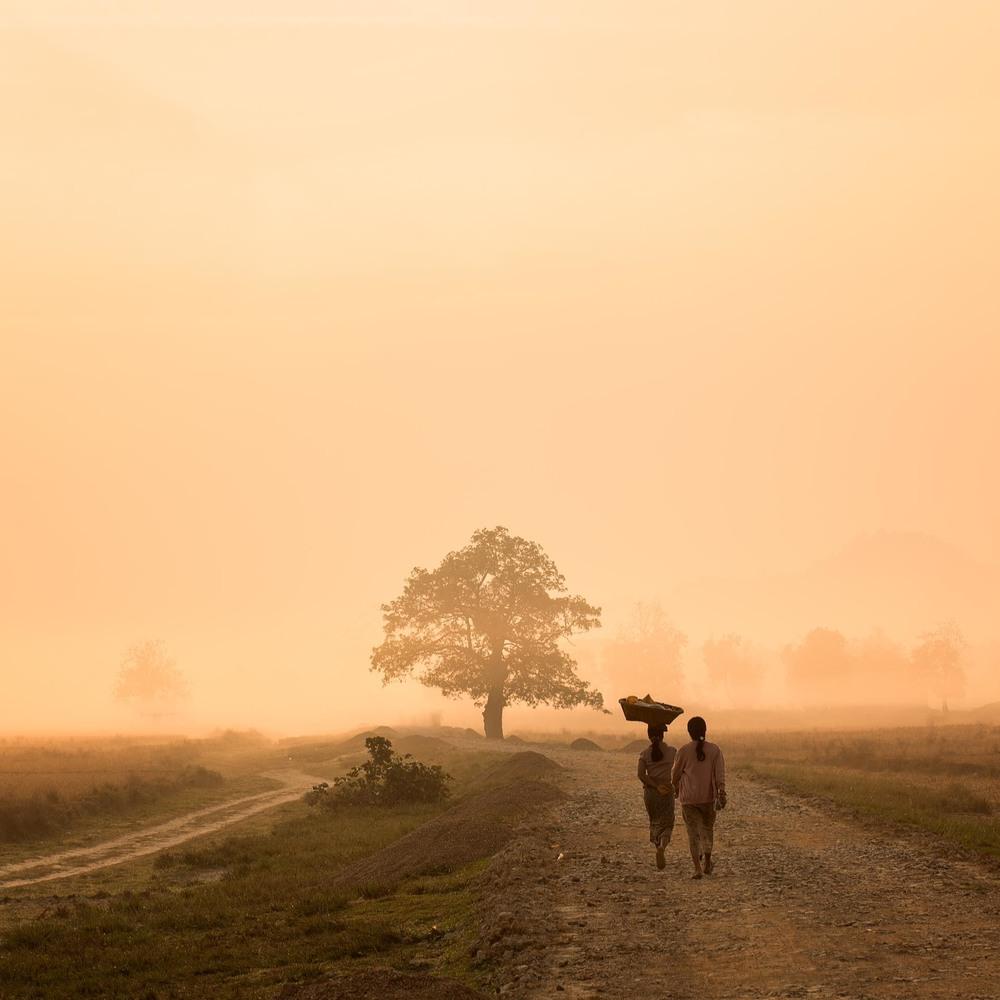 A foggy morning outside of Mrauk U. Myanmar