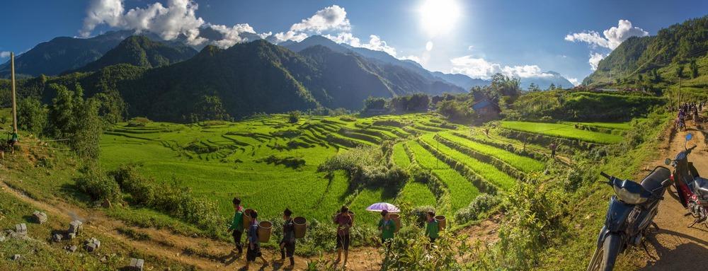 Rice paddies in the mountain valleys around Sa Pa. Vietnam