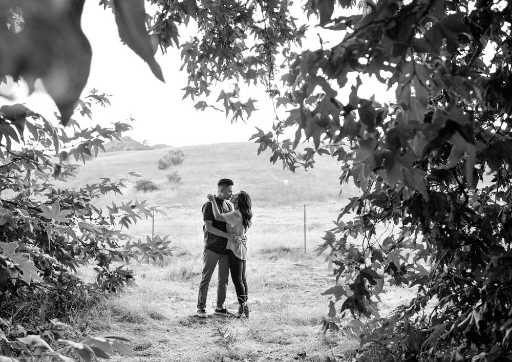 471-riley-wilderness-park-engagement-photos.jpg