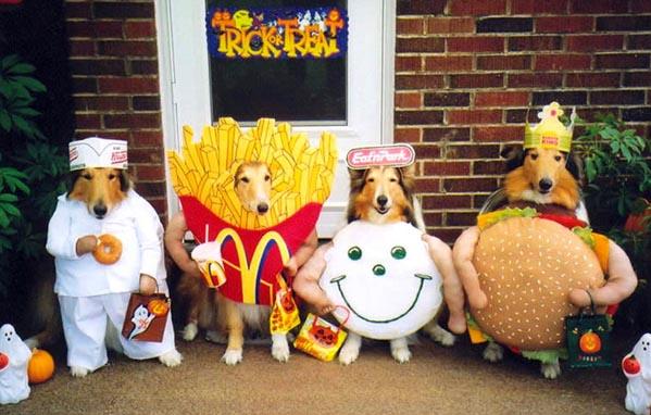 DogCostumes1.jpg