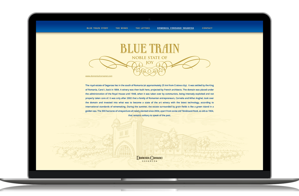 bluetrain-website-4.png