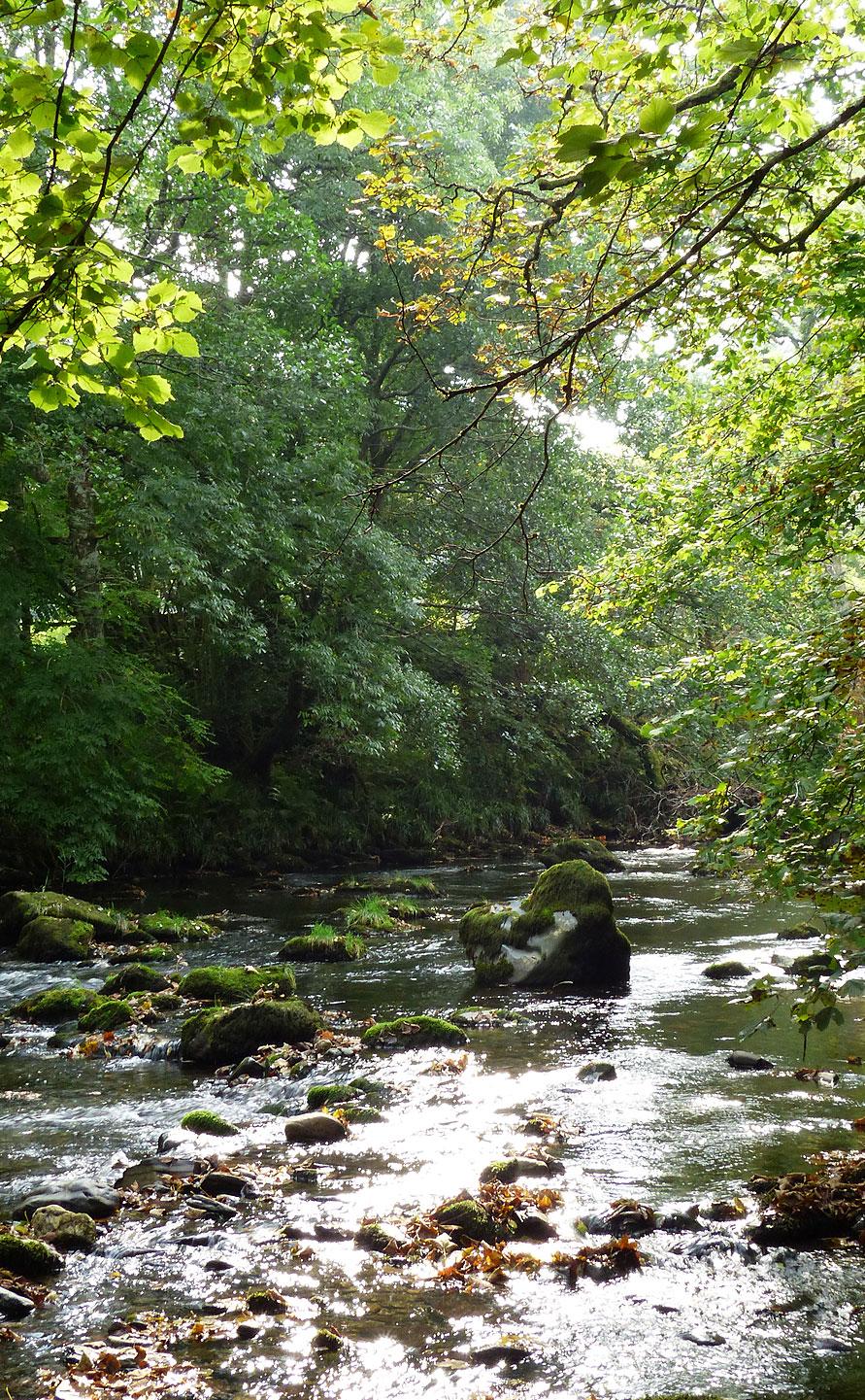 Day_01_photos_river_12.jpg