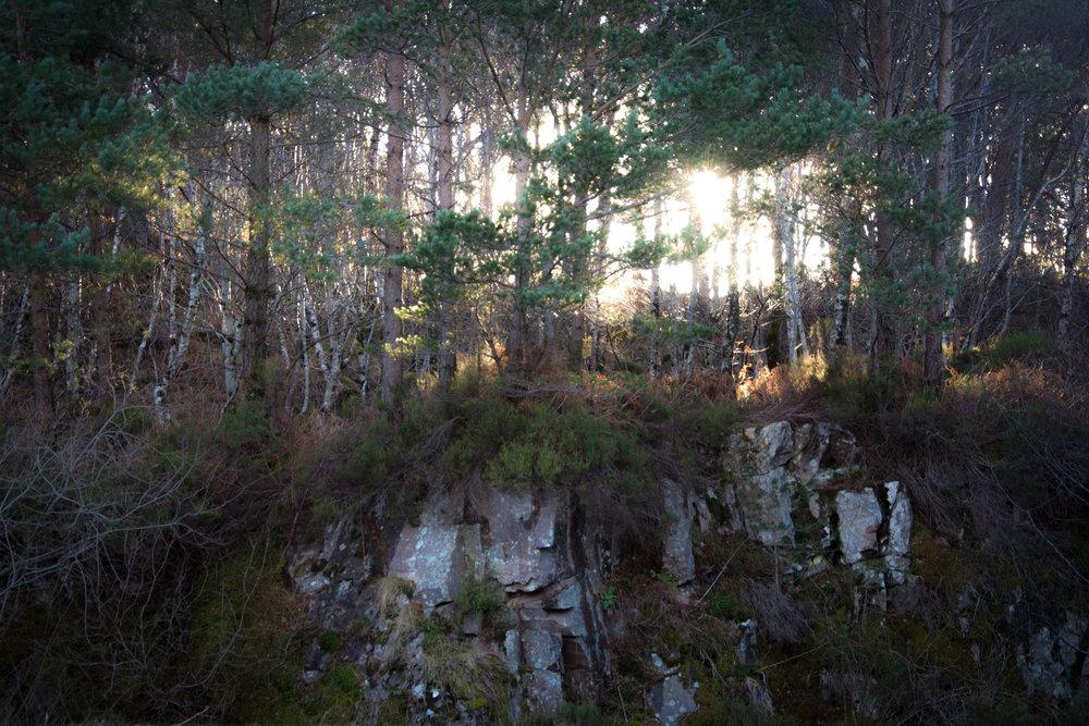 Lakes-Scotland-Trip_270.jpg