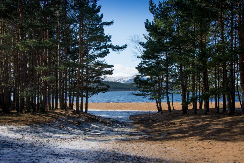 Lakes-Scotland-Trip_579.jpg