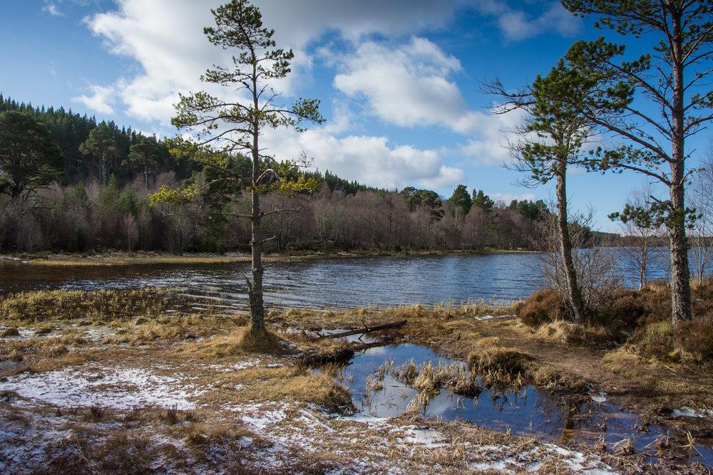 Lakes-Scotland-Trip_594.jpg