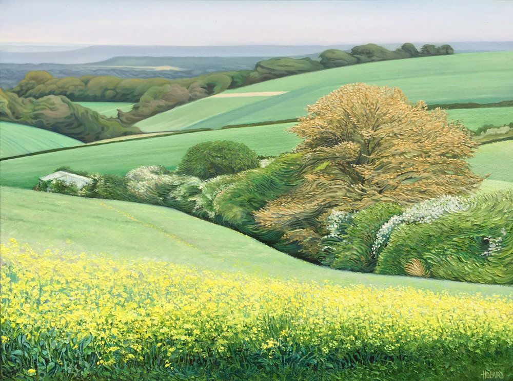The Folds of Dorset (SOLD) - Oil on canvas35.5cm x 65.5cmSOLD