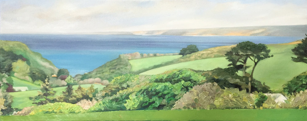 Devon Coastine - Oil on canvas20cm x 50cmSOLD