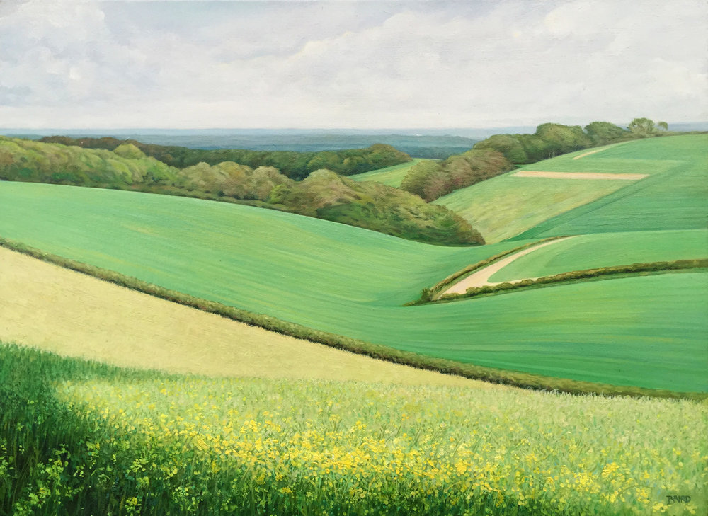Last of the Oilseed Rape - Oil on canvas35.5cm x 65.5cmSOLD