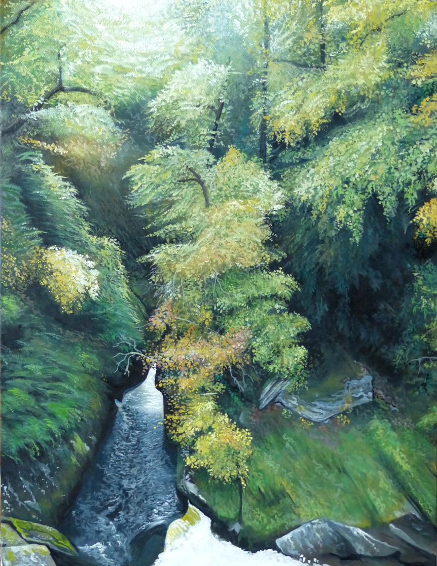 Sunlit Gulley - Oil on canvas45.5cm x 35.5cmSOLD