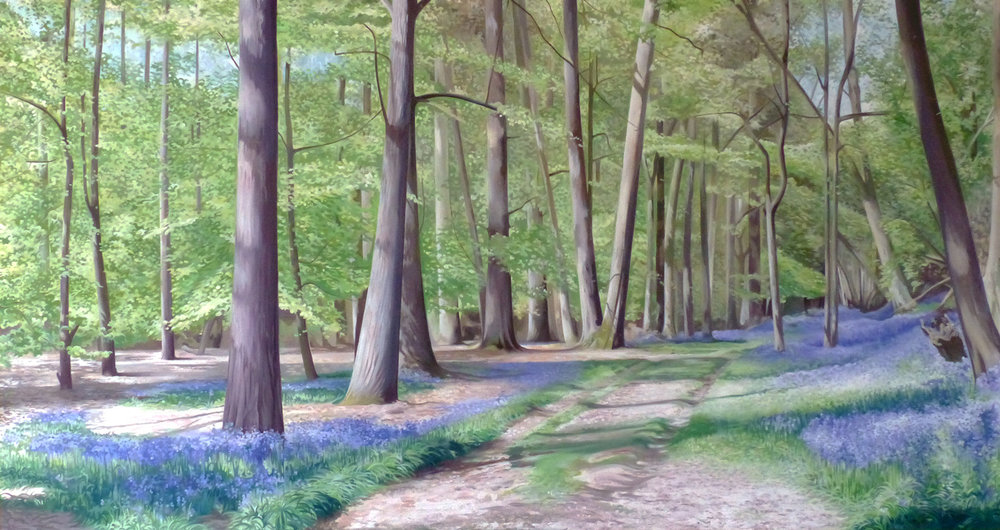 The Bluebell Wood  - Price on applicationOil on canvas45cm x 145cmBox canvas (unframed)