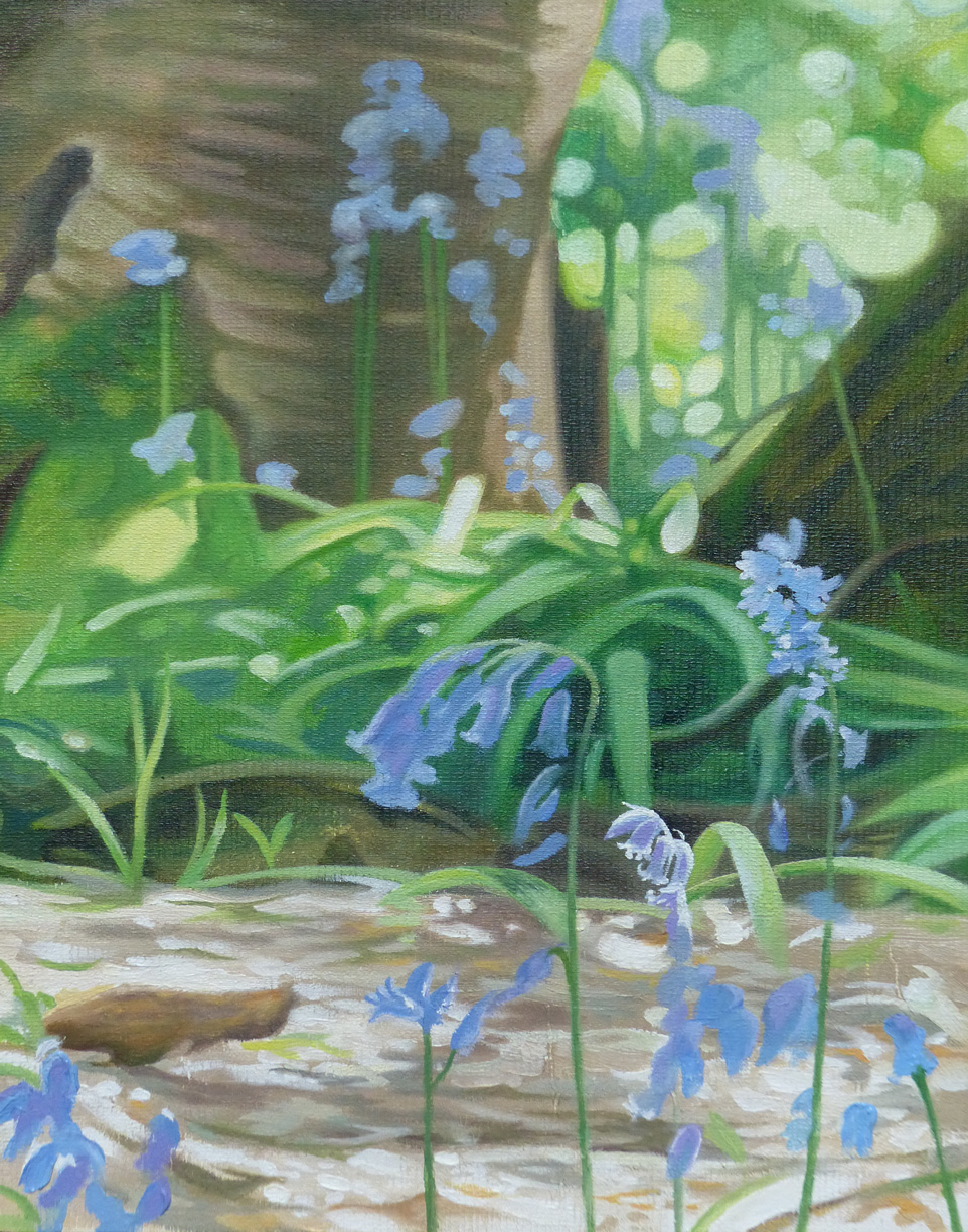 Bluebell Study - Oil on canvas boardSOLD