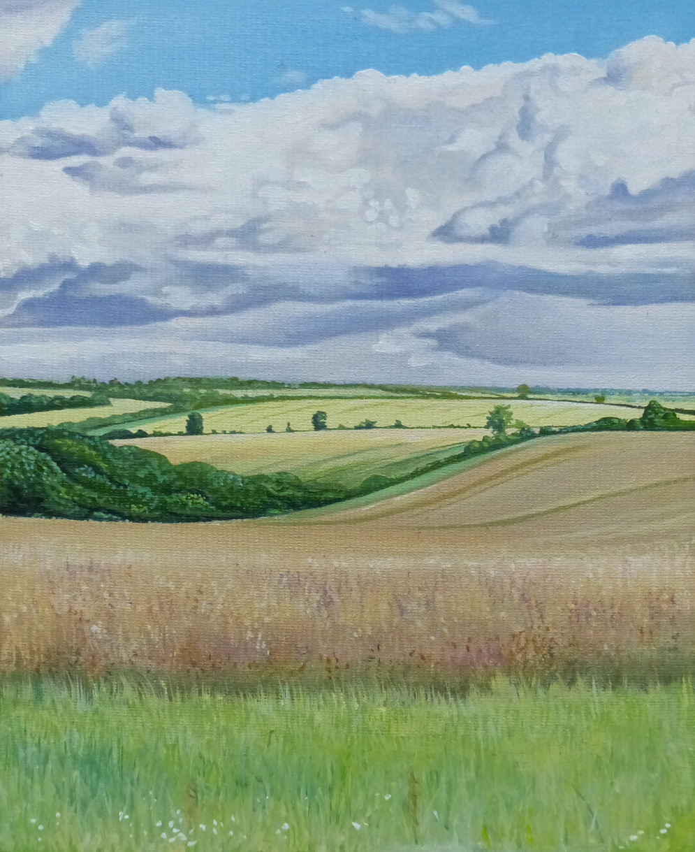 Sweeping Fields - Oil on canvas board20cm x 30cmSOLD