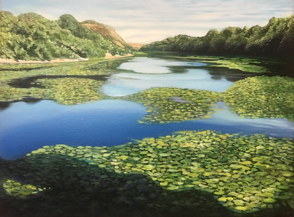 Bosherston Lily Ponds - (Commission)