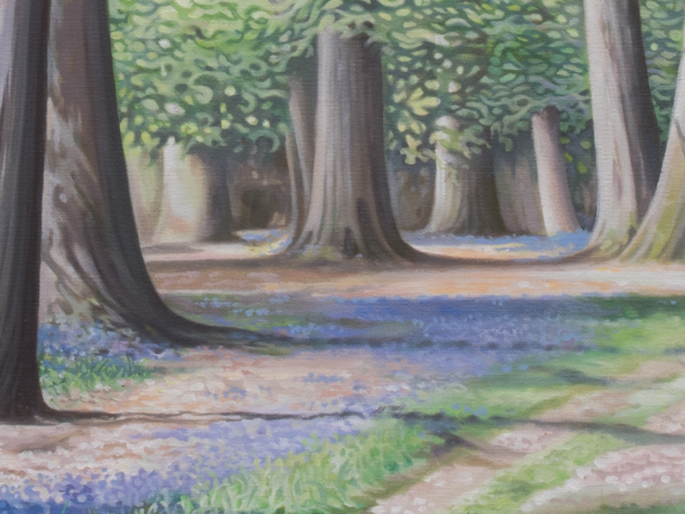The Bluebell Wood_1.png