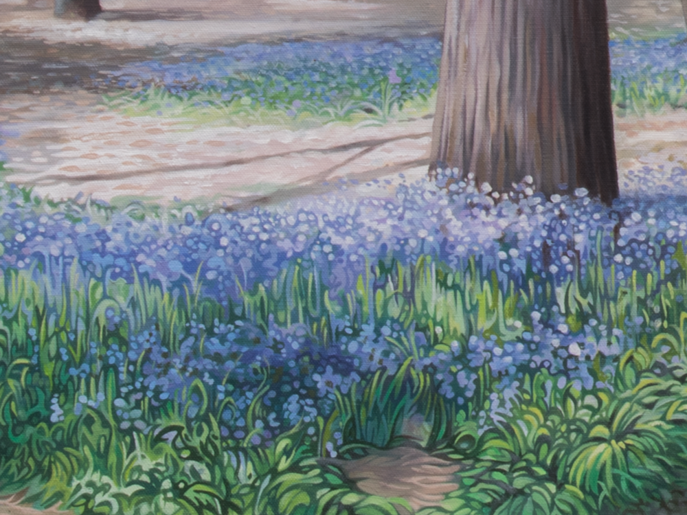The Bluebell Wood_2.png