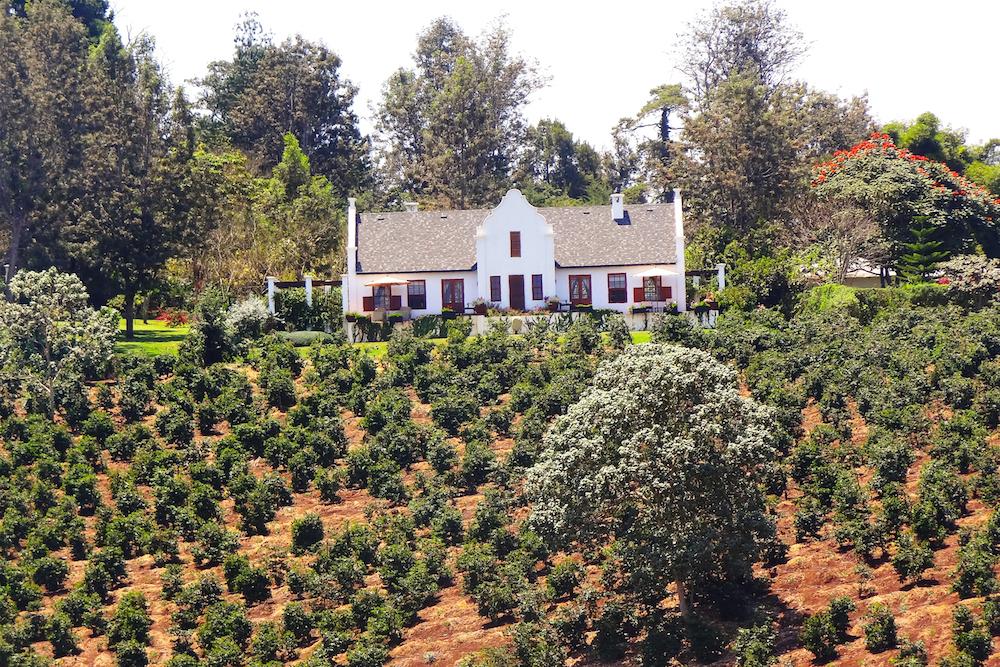The_Manor_Coffee_Plantation_Tanzania_Safari_Takims_Holidays
