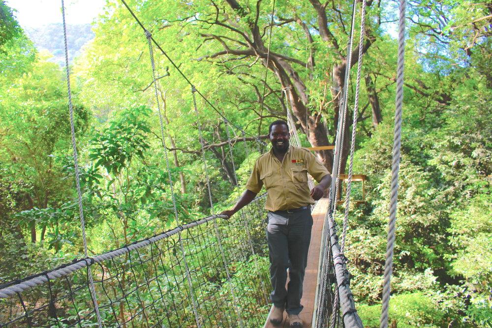 treetop_walkway_lake_manyara_takims_holidays_1