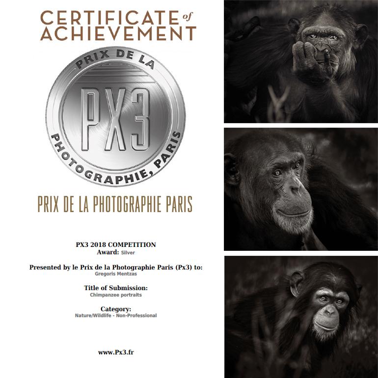 certificate+pics.jpg
