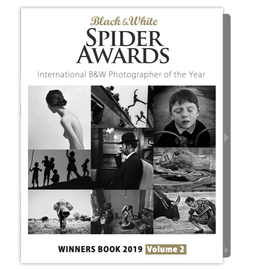 Spider-awards-1st-page.png