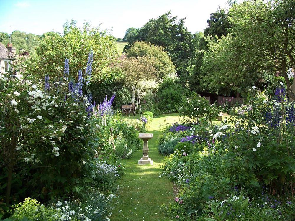 Nicky's Garden