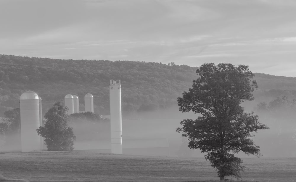 """Morning Mist in the Farm Valley.""  A scene passed by thousands of people every day."