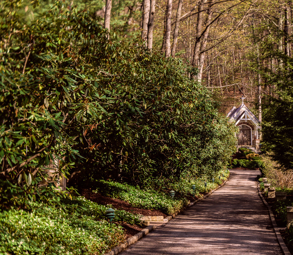 "We need about two more weeks of sun and warmth for all the flowering bushes and trees to reach their peak beauty. ""Little chapel in the woods,""  (c) Rebecca LaChance, 2015, Emmitsburg, MD."