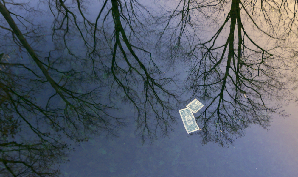 "New Year Day good luck.  The sunrise and trees are reflected in the reservoir of the fountain at the National Grotto.  The dollar bills in the water were a serendipitous find! ""Money on the water"" (c) Rebecca LaChance, 2015, Emmitsburg, MD"