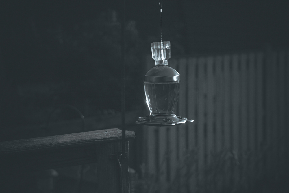 """Flare on the hummingbird feeder"" (c) Rebecca LaChance, Thurmont, MD. 2015.  What happens if you use the sun flare off the glass of the feeder as your metering point?  This!  I love experimenting. Another case of ""start where you are and use what you have."" Don't be afraid to experiment!  The results of this experiment will help me compose a great photo the next time I'm in full sunlight with sun flares!"