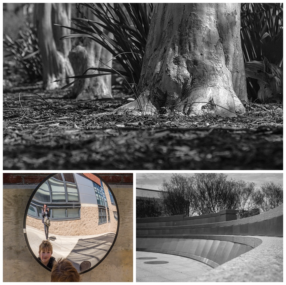 "Three more photos from the Washington, D.C. Photowalk.  ""Roots on the ground"", ""Boy in the mirror"" and ""Memorial Curve"". (c) Rebecca LaChance, 2015, Washington, DC."