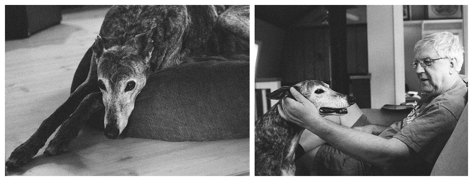 """Jackboy"" and ""A dog and his man"" (c) Rebecca LaChance, 2015. Thurmont, MD. Ilford 3200 Black and white film.  This film is celebrated for its graininess."