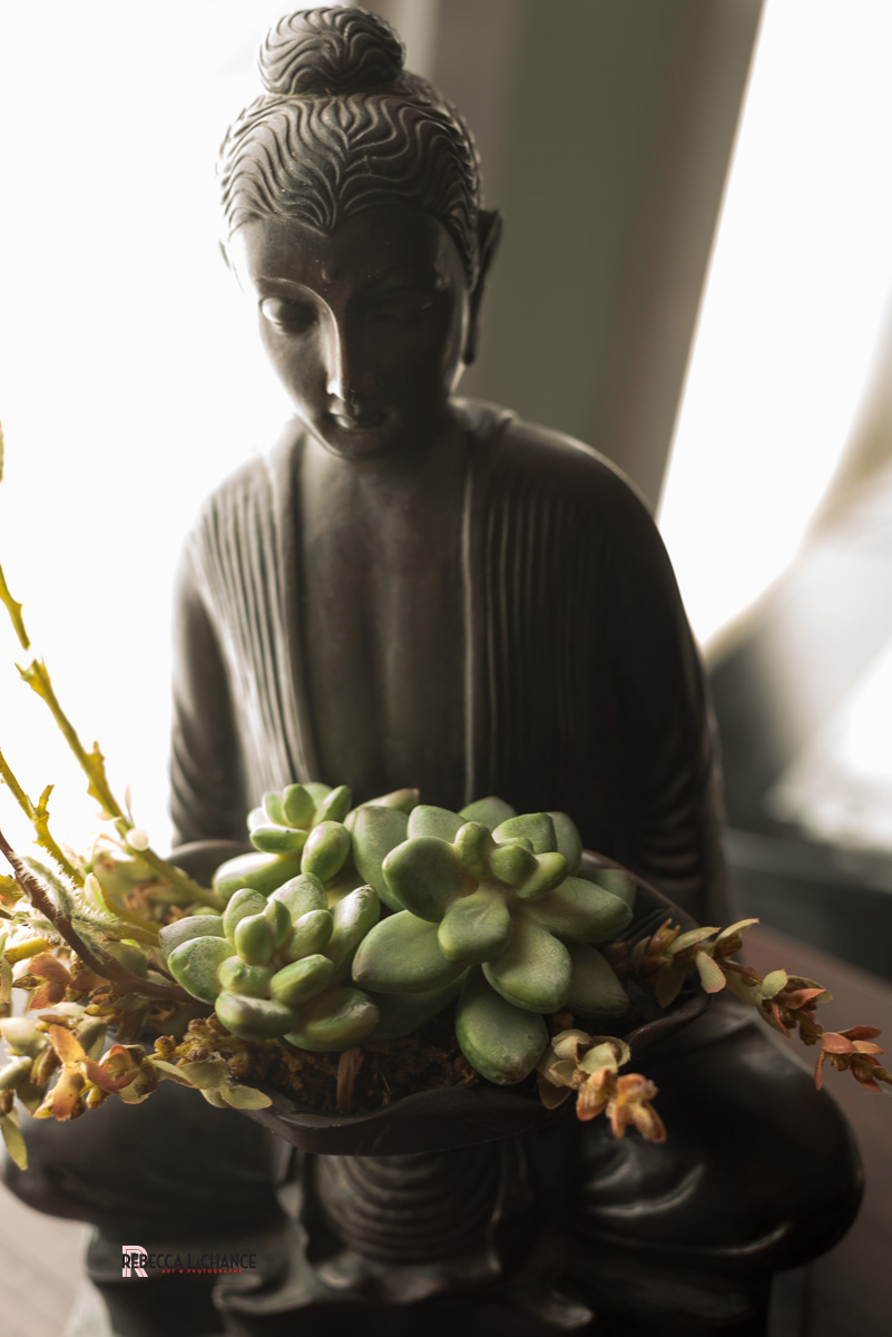 """Grace defies reason and logic."" - Bono. ""Buddha Still Life"" (c) Rebecca LaChance, 2015, Thurmont, MD"