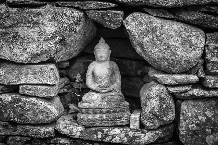 """The Buddha in the retaining wall"" (c) Rebecca LaChance, 2015. Cushing, Maine. Do you see the beautiful spider web?"