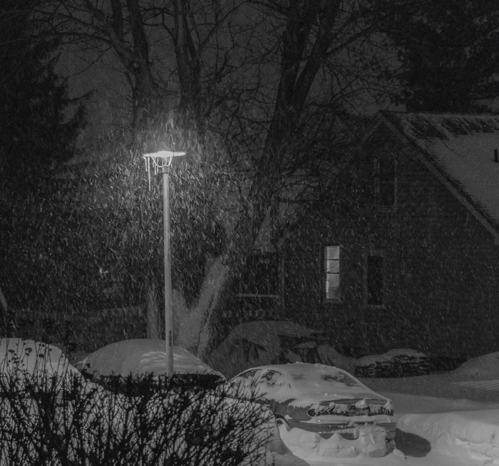 And.....it's still coming down! (c) Rebecca LaChance, 2016, Thurmont, MD
