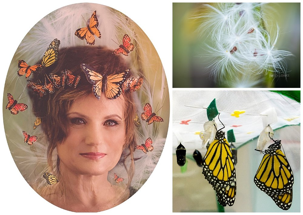 "Sometimes the photographer has to bide her time to create a special storytelling portrait. ""She saves Monarch Butterflies"" (c) Rebecca LaChance, 2017, Thurmont, MD. (Top R) Milkweed from our backyard. (Bottom) Two monarchs just emerged from the chrysalides. The monarch picture was taken with my iPhone while sitting in the chair at the dental office."