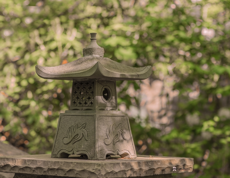 """Shadow dappled stone lantern"" (c) Rebecca LaChance, 2016.  National Grotto, Emmitsburg, MD.  We're all looking for a little light to make things clear."