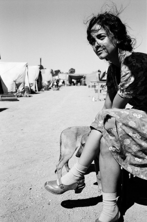 commovente :      Terry Franco Mexican girlfriend of Kerouac