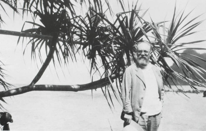 billowy :     Matisse in Tahiti