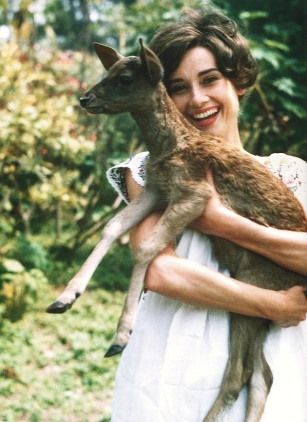 womenofthe30s-70s :     Audrey Hepburn