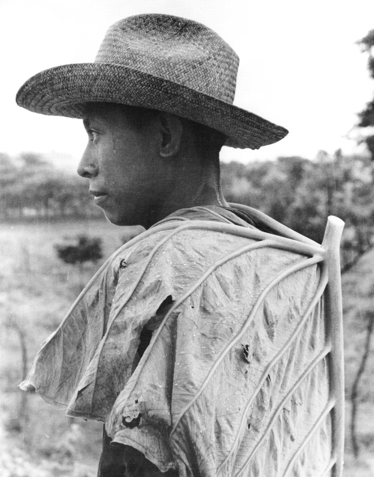 sapta-loka :     Héctor García,Campesino cubierto con hoja, 1965