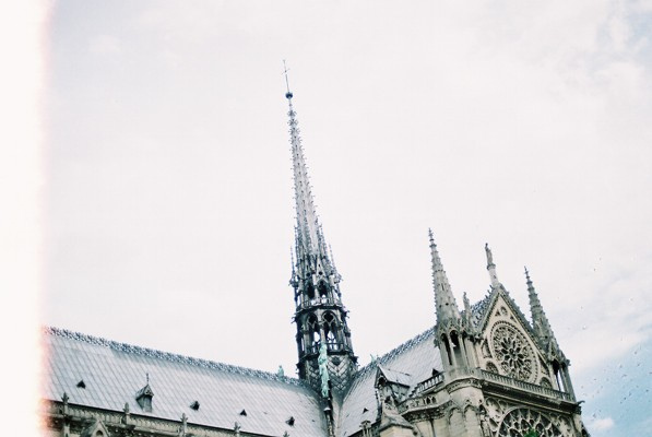 wildstag :      Notre Dame  by  Riccy Wings  on Flickr.