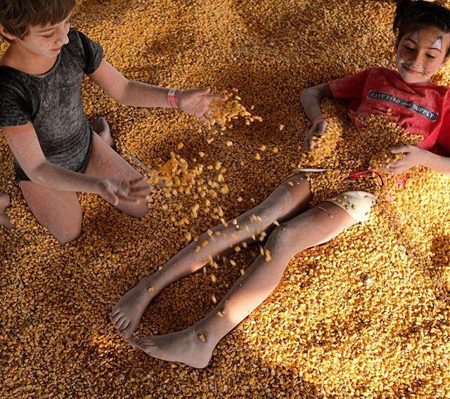 Corn...