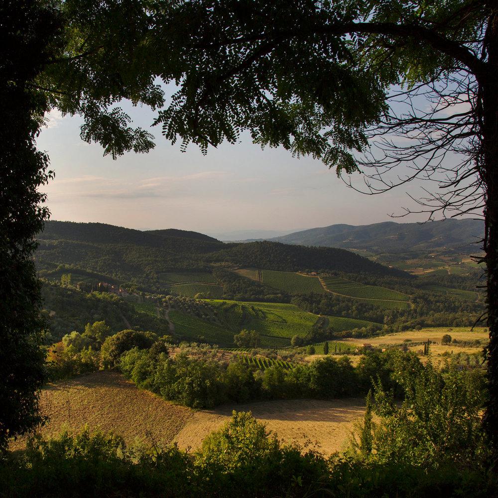tuscany_erik-melvin_1.jpg