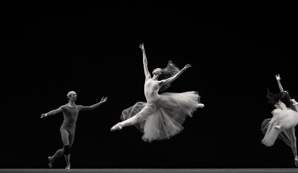 nyc-ballet_erik-melvin_8.jpg