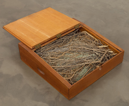 Robert Kinmont, Sit on the floor, 1971. Wood and sage, 6.75 x 23.75 x 23.5 in. Courtesy of Alexander and Bonin Gallery, New York.