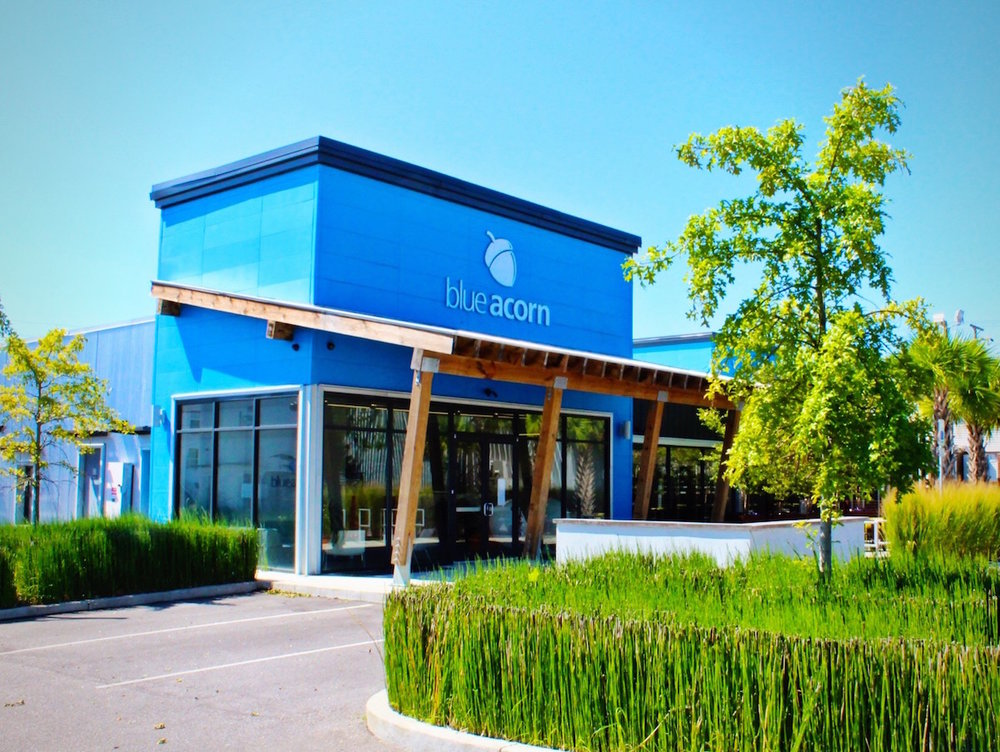 Blue Acorn Office