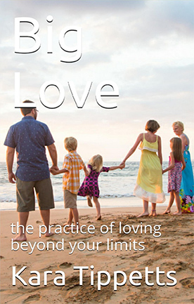 Big Love eBook