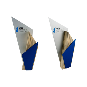 contemporary award custom eco friendly trophy design