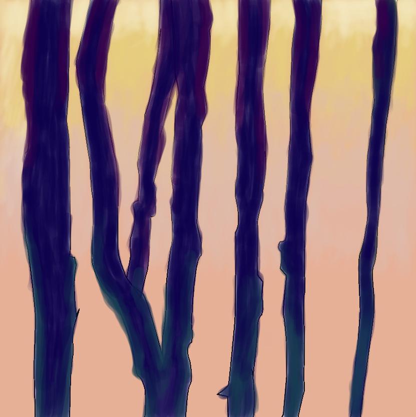 colorstudy1.jpg